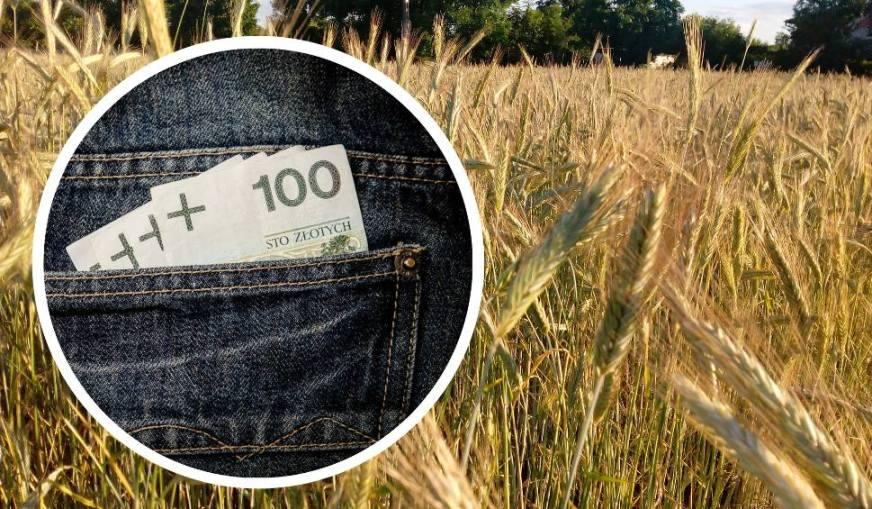 Kredyty, Pożyczki prywatne, Chwilówki, dla rolników pod zastaw gruntów rolnych, ziemii i sprzętu rolnego w Elblągu www.supraxconsulting.pl